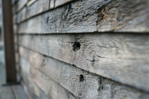 Wandbekleding ruweiken Crumbledevelopment 04